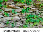 stone wall with green foliage.... | Shutterstock . vector #1093777070