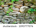 stone wall with green foliage.... | Shutterstock . vector #1093777076