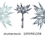 a branch of a plant with leaves.... | Shutterstock .eps vector #1093981358