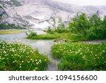 beautiful lake flowers | Shutterstock . vector #1094156600