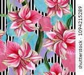 pink striped amaryllis. floral... | Shutterstock . vector #1094215289