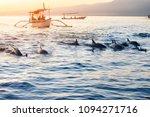 Bali Indonesia Free Dolphin...