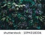 beautiful nature background of... | Shutterstock . vector #1094318336