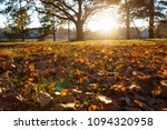 fallen trees in autumn in the... | Shutterstock . vector #1094320958