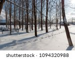 trunks of tall trees on a... | Shutterstock . vector #1094320988