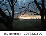 large dry trees against the... | Shutterstock . vector #1094321600