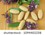 herbal tablet for good health | Shutterstock . vector #1094402258