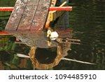 white duck. cute baby duck.... | Shutterstock . vector #1094485910