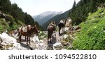the mules ascend to zolota's...   Shutterstock . vector #1094522810