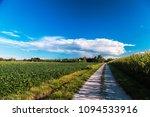 a fresh afternoon douring an...   Shutterstock . vector #1094533916