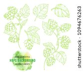 Sketches Of Hop Plant  Hop On A ...