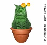 The Cat Cactus Sits In A Flowe...