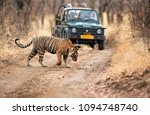 ranthambore  india april 30 ... | Shutterstock . vector #1094748740