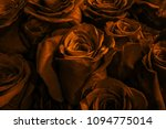 buds gold roses close up.... | Shutterstock . vector #1094775014