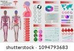 medical infographic set. human... | Shutterstock .eps vector #1094793683