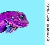 isolated colorful lizard ... | Shutterstock . vector #1094878163