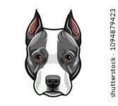 staffordshire terrier head. dog ... | Shutterstock .eps vector #1094879423