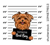 yorkshire terrier bad boy. dog... | Shutterstock .eps vector #1094879813