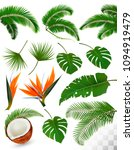 set of tropical leaves and... | Shutterstock .eps vector #1094919479