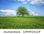 the good tree  the giving tree. ... | Shutterstock . vector #1094924129