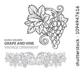 Grape. Hand Drawn Grape And...