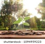money growing from coins  | Shutterstock . vector #1094959223