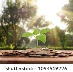 money growing from coins  | Shutterstock . vector #1094959226