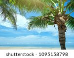 palm tree and tropical beach | Shutterstock . vector #1095158798