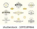 set of  modern vintage cannabis ... | Shutterstock .eps vector #1095189866