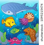 coral fauna topic image 4  ... | Shutterstock .eps vector #1095215474