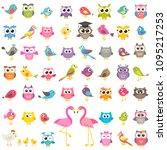 set of different kinds of birds | Shutterstock .eps vector #1095217253