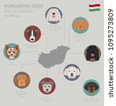 dogs by country of origin.... | Shutterstock .eps vector #1095273809