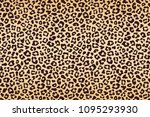 leopard beige brown spotted fur ... | Shutterstock .eps vector #1095293930