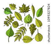 tree leaves. colorful... | Shutterstock .eps vector #1095327824