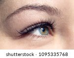 beautiful macro shot of female...   Shutterstock . vector #1095335768