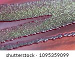 colony characteristics of... | Shutterstock . vector #1095359099