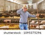 a farmer carefully raises his... | Shutterstock . vector #1095375296