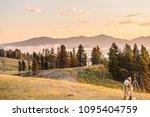 hayden valley  wy  july 14 ... | Shutterstock . vector #1095404759