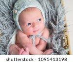 portrait of a little newborn... | Shutterstock . vector #1095413198