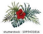 tropical vintage hibiscus ... | Shutterstock .eps vector #1095431816