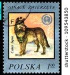 poland   circa 1977  a stamp... | Shutterstock . vector #109543850
