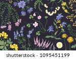 beautiful horizontal botanical... | Shutterstock .eps vector #1095451199