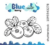 blueberry vector illustration ... | Shutterstock .eps vector #1095543278