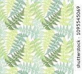 fern frond herbs  tropical... | Shutterstock .eps vector #1095545069