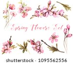 spring flowers watercolor.... | Shutterstock . vector #1095562556