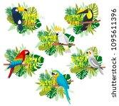 set with cute cartoon tropical... | Shutterstock .eps vector #1095611396