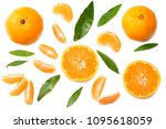 mandarin with slices and green... | Shutterstock . vector #1095618059