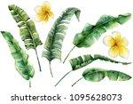 watercolor set with banana...   Shutterstock . vector #1095628073