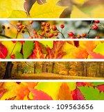 Set Of 5 Different Autumn's...