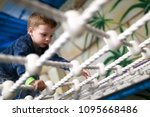 child crawling on rope mesh at... | Shutterstock . vector #1095668486